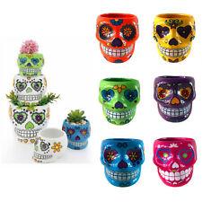 1pc Patterned Ceramic Pot Cacti Succulent Flower Skull Plant Pot Garden décor