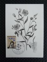 BELGIEN MK 1967 FLORA BLUMEN MAXIMUMKARTE CARTE MAXIMUM CARD MC CM c5291