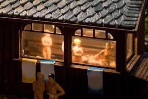Vollmer 45146 Sauna With Interior And LED Lighting Kit HO OO Gauge