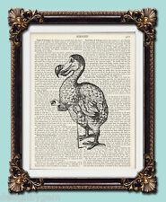 DODO-Alice nel Paese delle Meraviglie vintage con stampe d'arte-Enciclopedia Dizionario