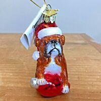 Bulldog Christmas Ornament Hand Blown Glass Kurt S Adler Noble Gems New Gift