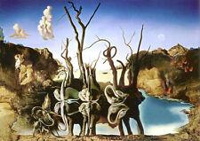 Puzzle Schwäne spiegeln Elefanten - Dali, 1000 Teile, Surrealismus, Eurographics