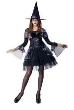 NEW Womens Purple GOTHIC WITCH Dress Hat Adult Halloween Costume Size M 8-10