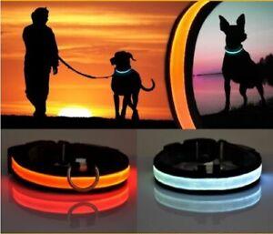 LED Dog Pet Collar Adjustable Flashing Safety Light Up Waterproof Nylon Tag