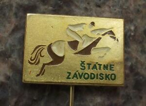 Bratislava Slovakia State National Race Course Jumping Horse Racing Pin Badge
