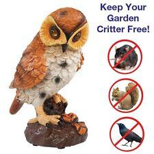 Motion Activated Hooting Lifelike Owl Decor Shining Eyes Light Up Hoots NEW