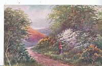 Devon Postcard - Devonshire Lane Near Tavistock     ZZ3592