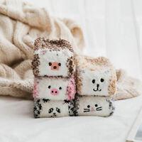 Fluffy Coral Velvet Sock Sleep Floor Socks Cute Cartoon Animal Warm Hosiery