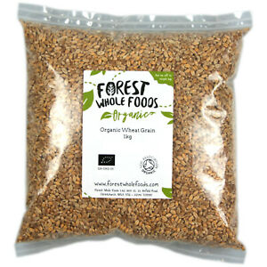 Organic Wheat Grain - Forest Whole Foods
