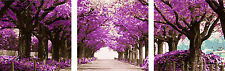 3PCS Painting DIY Acrylic Paint By Number Canvas 20x20 - Purple forest