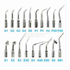 Dental Ultrasonic Scaler Scaling Endo Perio Tip Fit EMS Woodpecker G P E 19 Type