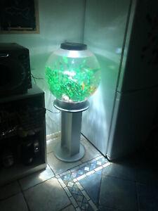 biOrb 60litre Fish Tank