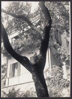 YZ0301 Arzeno (GE) 1939 - Facciata di abitazione tra gli alberi - Foto d'epoca