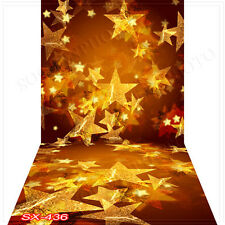 Christmas10'x20'Computer/Digital Vinyl Scenic Photo Backdrop Background SX436B88