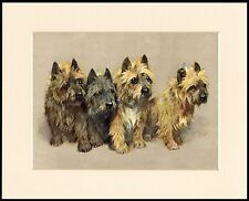 CAIRN TERRIER FOUR DOGS LOVELY DOG PRINT MOUNTED READY TO FRAME