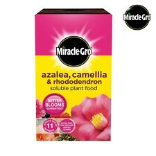Miracle Gro Azalea, Camellia & Rhododendron Soluble Plant Food 1kg Free Delivery