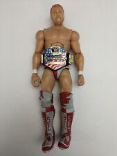 WWE Daniel Bryan Figure Mattel Elite 12 WWF WCW TNA ROH NXT NWA US United Belt
