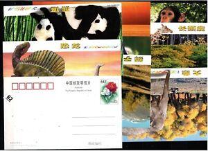 // CHINA - 8 POSTCARDS - ANIMALS, ELEPHANT, PANDA, DINOSAUR