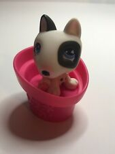 Littlest Pet Shop Rare Diary Bull Terr