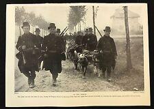 1934 Dog Print / Bookplate - Belgian Army & Dogs pull machine guns WW1