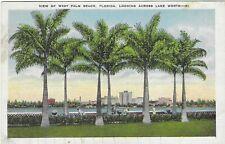 Vintage Florida Linen Postcard West Palm Beach Looking Across Lake Worth