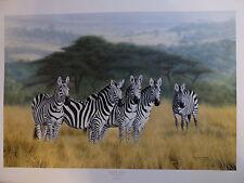Charles Frace Undivided Attention Zebras from 1990 LTD ED S/N W/COA Mint New