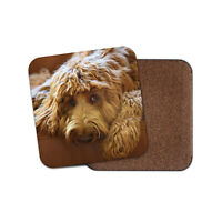 Cute Brown Labradoodle Coaster - Dog Puppy Pet Animal Adorable Cool Gift #15514