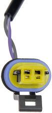 Liftgate Release Switch Dorman 901-156