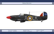 Hawker Hurricane Mk IIB Vintage Aircraft Art Print 13 x 19