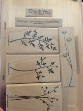 Stampin Up STEM SILHOUETTE stamps flowers Berries - BOGO 1/2 Price Equal or Less