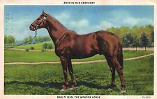 "Man O' War,""The Wonder Horse"",Kentucky Breed,Used,1933"