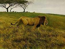 Robert Bateman -  Lion and Wildebeest  - Limited Edition Print