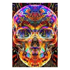 Colorful Skull 5D Full Diamond Painting Embroidery DIY Cross Stitch Decor