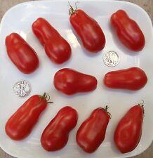 Super Italian Paste - Organic Heirloom Tomato Seeds - Premier Paste - 40 Seeds