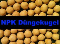 50 npk-düngekugeln pour plantes aquarium poissons Engrais ENGRAIS