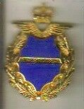 ROYAL AIR FORCE NURSE OFFICER's MESSDRESS BADGE