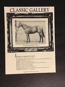 RIBOT Horse Racing CHAMPION SIRE
