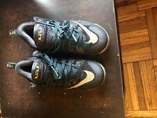 Nike Lebron 12 Low Size 10.5