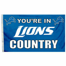 Detroit Lions Country Grommet Pole Flag