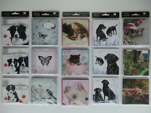 """12 Blank Mini Notecards (4"""" x 4"""") with Envelopes (Choice of 5)"""