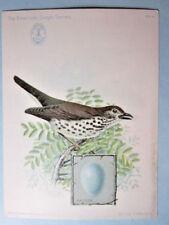 Antique- 1898, American Singer Sewing Machine Bird card, No. 4, Wood Thrush