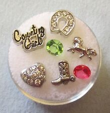 CLEARANCE LOT #41 COWGIRL-COUNTRY GIRL FLOATING CHARM SET MEMORY LOCKETS