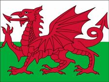 A4 WALES / WELSH NATIONAL FLAG CAKE TOPPERS DECORATIONS ON EDIBLE RICE PAPER