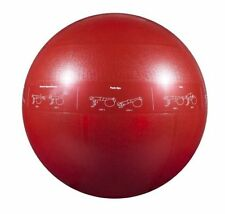 Fitness Exercise Balls