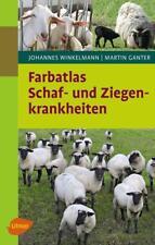 Farbatlas Schaf- und Ziegenkrankheiten von Johannes Winkelmann und Martin Ganter (2017, Gebundene Ausgabe)