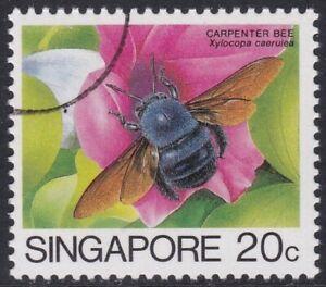Specimen, Singapore Sc456 Insect, Blue Carpenter Bee