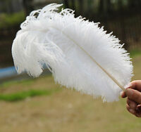 New 100 pcs white Ostrich Feathers 12-14 inch/30-35 cm Wedding Carnival headress