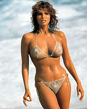 Raquel Welch 8x10 Color Classic Celebrity Photo #16
