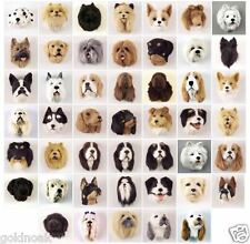 (5) DIFFERENT DOG MAGNETS WHOLESALE! Very realistic collectible fur. Magnets.