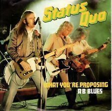 7inch STATUS QUO	what you're proposing	HOLLAND EX+ 1980	   (S0387)